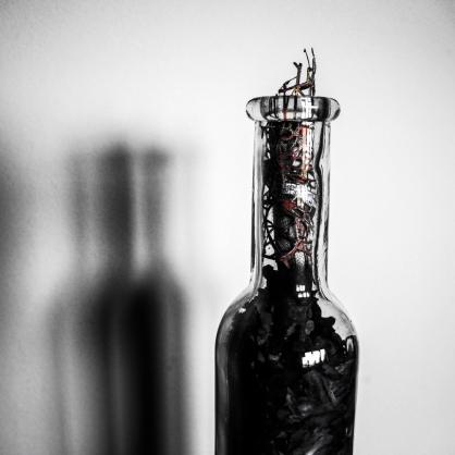 BottleSmoke2